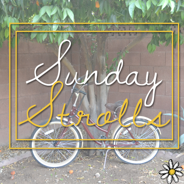 Sunday Strolls-1