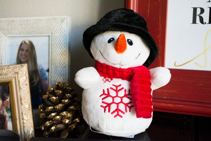 Wide_Apt_View_Christmas_Decor_Dash_of_Daisy_blog3