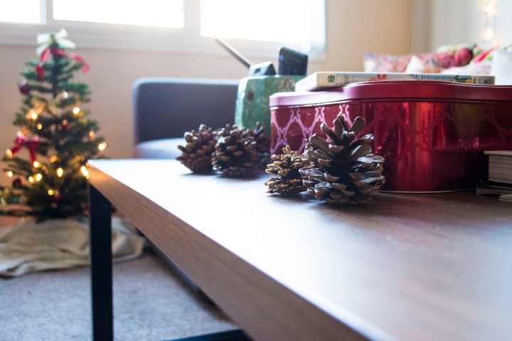 Wide_Apt_View_Christmas_Decor_Dash_of_Daisy_blog5