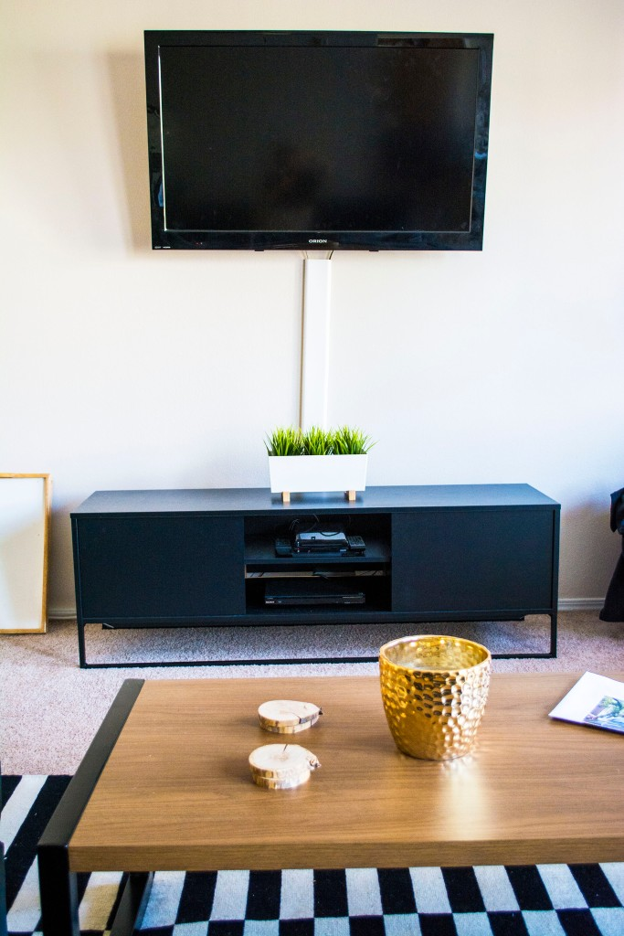 Ikea_TV_Furniter_Target_Room_Essentials_Coffee_Table_College_Student_Living_Room_Taylor_Seely
