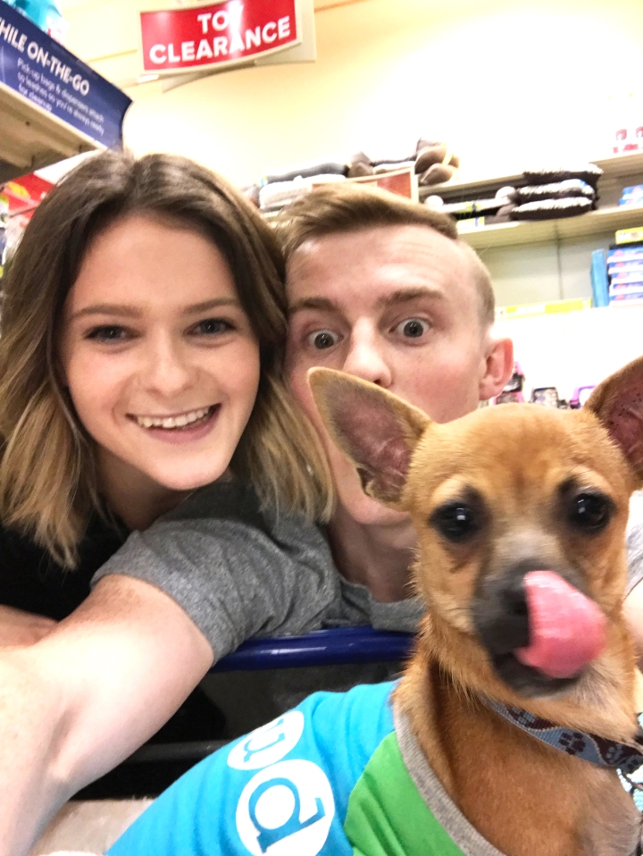 ollie-in-petsmart-right-after-being-adopted